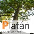 Platán Szálláshely